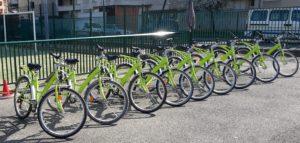 Vélo Ecole 4